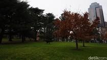 Foto: Taman Sejuk di Melbourne Warisan UNESCO