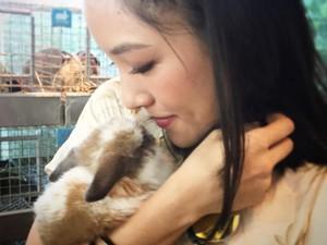 Kelinci Constance Wu Berulah, Apartemen Rp 93 Miliar Penuh Kotoran