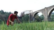 Angkut Hasil Bumi, Kwik Pernah Jadi Andalan di Rute Bandung-Ciwidey