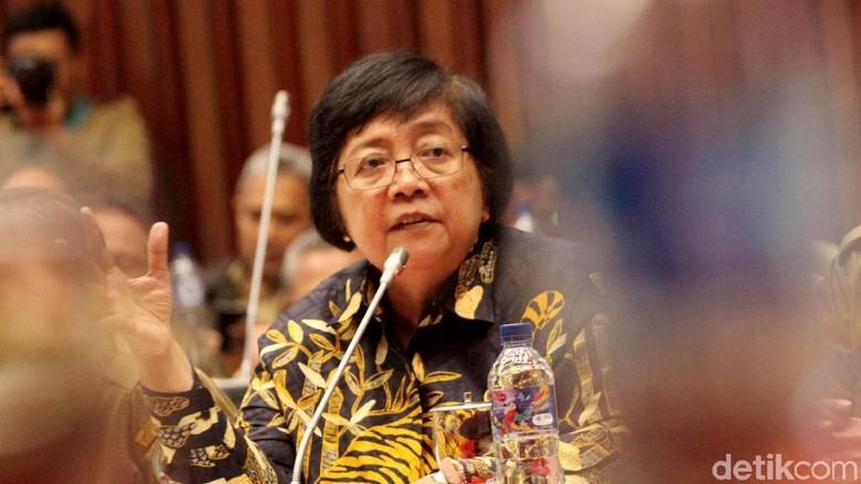 Menteri Siti Gelar Rapat Kerja Bersama Komisi IV DPR