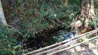 Parafu atau sumber air menurut Suku Mbojo di Bima (Harianto/detikTravel)
