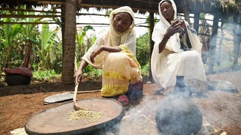 Foto: Penduduk Ethiopia sedang mengeringkan kopi (Thomas Lewton/BBC Travel)