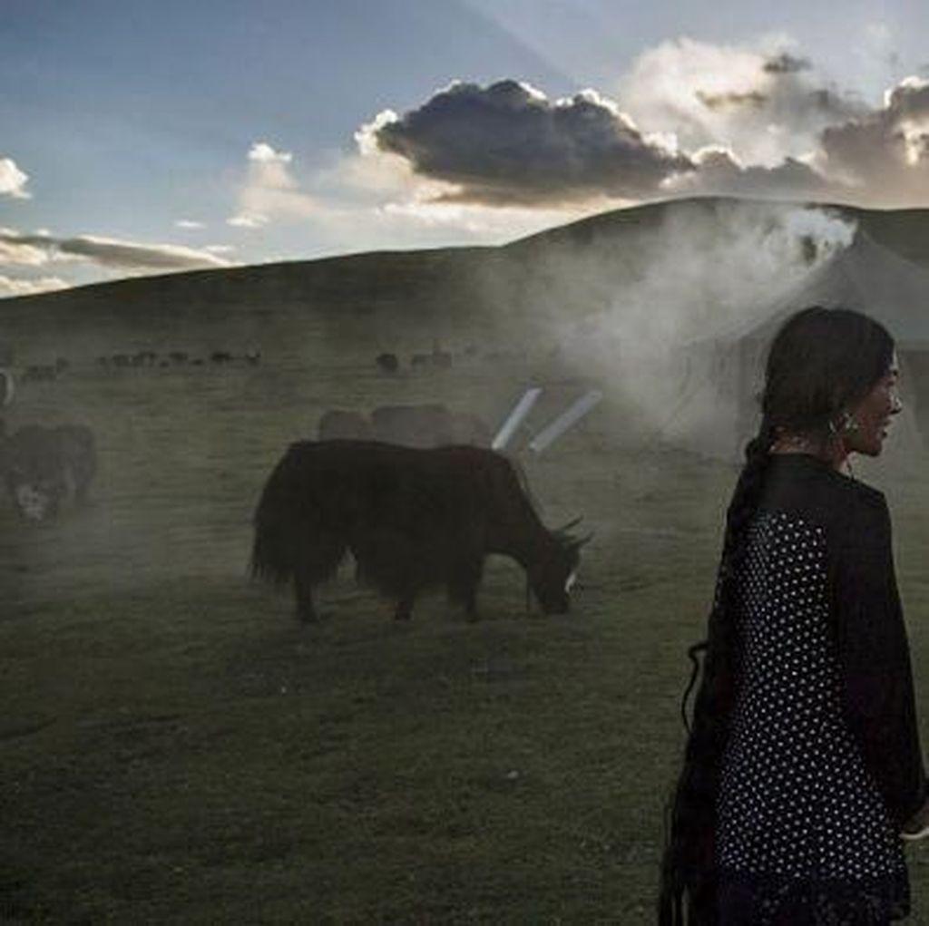 Perubahan Iklim Mengancam Kehidupan di Atap Dunia Tibet