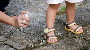 5 Alasan Anak Lebih Sering Digigit Nyamuk Ketimbang Orang Dewasa