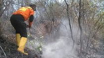 Kebakaran Sindoro-Sumbing Padam, Warga Diimbau Waspadai Satwa Liar