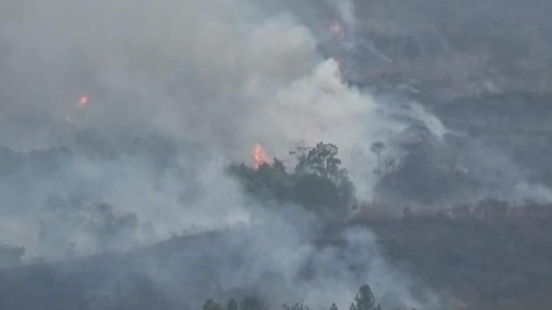 Lahan Seluas 87 Hektare di Gunung Ciremai Terbakar