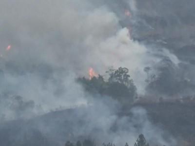 Dear Pendaki Gunung, Hati-hati Kebakaran Hutan di Jawa