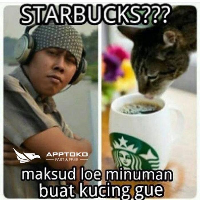 Jangan dulu bangga dan sombong kalau bisa beli kopi di Starbucks. Nih lihat, cowok ini bahkan ngasih minum kucingnya pakai kopi mahal. Foto: Istimewa