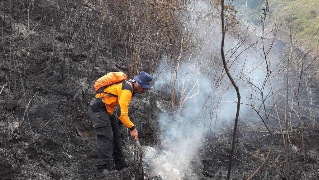 Water Bombing Gunung Ciremai, BNPB: Titik Api Masih Ditemukan
