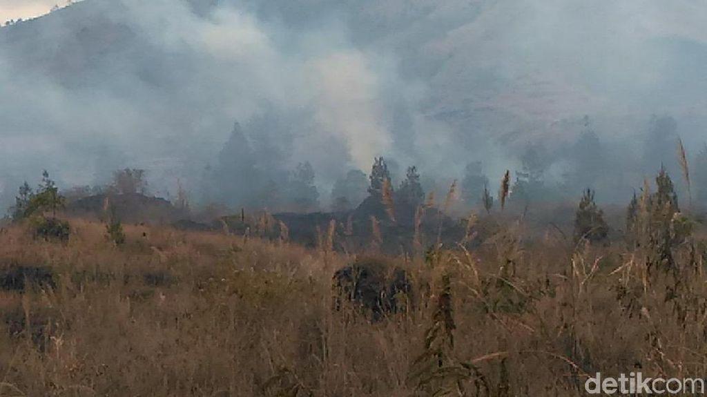 Hutan di Gunung Guntur Garut Terbakar