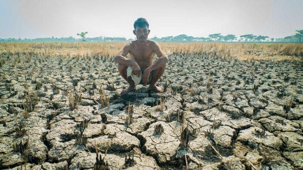 Kekeringan Parah di Australia Menyebar ke Indonesia