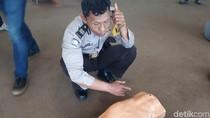 Foto: Beragam Ekspresi Saat Menghadapi Korban Pingsan Mendadak