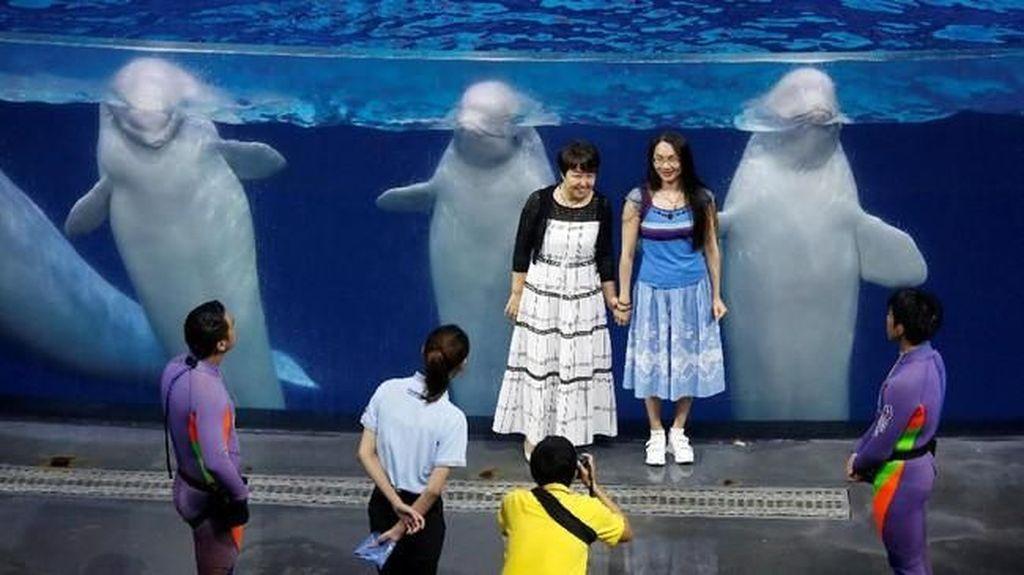 Potret Penjara Paus dan Lumba-lumba di China