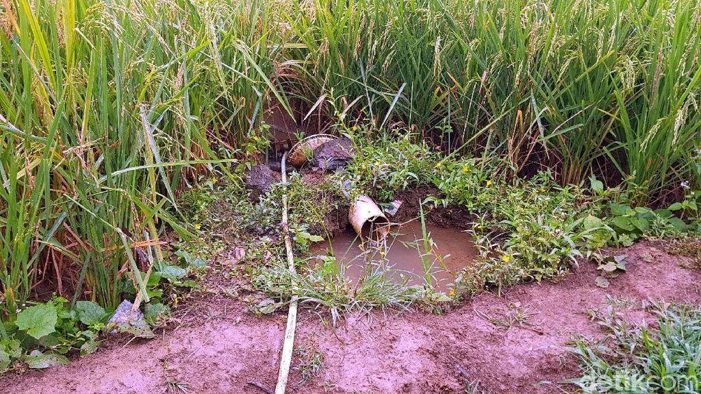 Warga Minum Air Selokan, FK3I Jabar: Bila Terbukti akan Kita Gugat