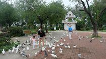 Ini Destinasi Wisata Gratis yang Bisa Dikunjungi Jika ke Nanjing