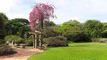 Menikmati Singapura yang Hijau di Akhir Pekan