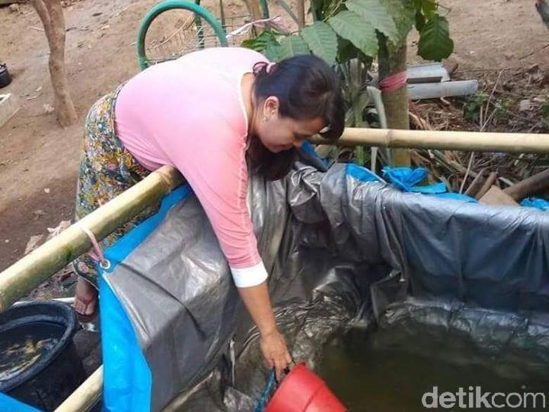 Pascagempa Lombok, Pengungsi Kekurangan Air Bersih