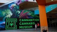 Museum Ganja Las Vegas Tampilkan Bong Tertinggi di Dunia