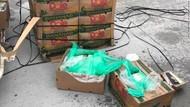 Paket Kokain Rp 263 M Disembunyikan di Kotak Pisang Disita di AS