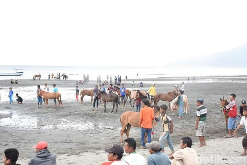 Kuda Sumbawa juga terkenal dengan kekuatannya dalam berlari. Tak heran jika di Kabupaten Dompu, setiap tahun digelar Lomba Pacuan Kuda. (Faruk Nickyrawi/detikTravel)