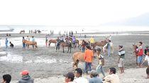 Foto: Pacuan Kuda Seru di Pantai Dompu