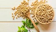 4 Makanan untuk Memperkuat Tulang Anak Selain Susu