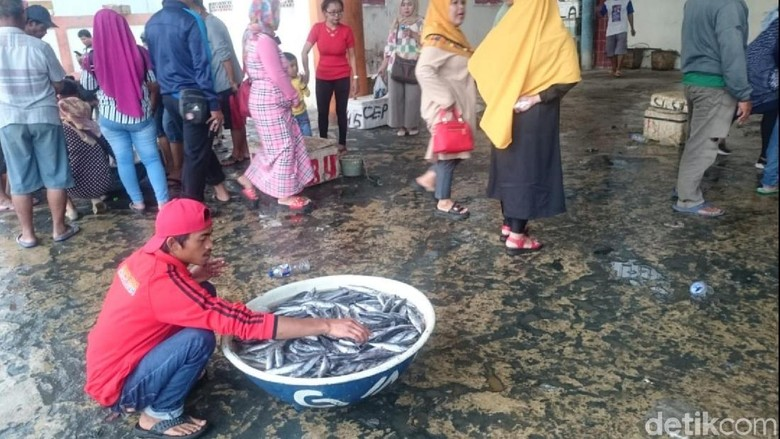 Nelayan Palabuhanratu Panen Ikan Lisong, Pembeli Menyemut