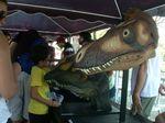 Nestapa Museum Nasional Brasil Gelar Festival di Pelataran