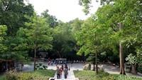 Traveler turun saja di Yuexiu Park Station atau jika naik bus, kamu bisa turun di Yuexiu Gongyuan atau di Yuexiu Gongyuan Beimen. Suasana sejuk, rindang, dan asri akan terasa bila sampai di taman ini. (Andini/detikTravel)