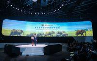 Menjelajahi Masa Depan Dunia Digital Alibaba