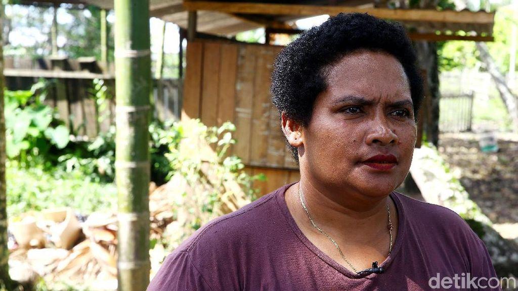 Ternak Babi di Perbatasan, Mama Papua Ini Untung Rp 10 Juta/Bulan