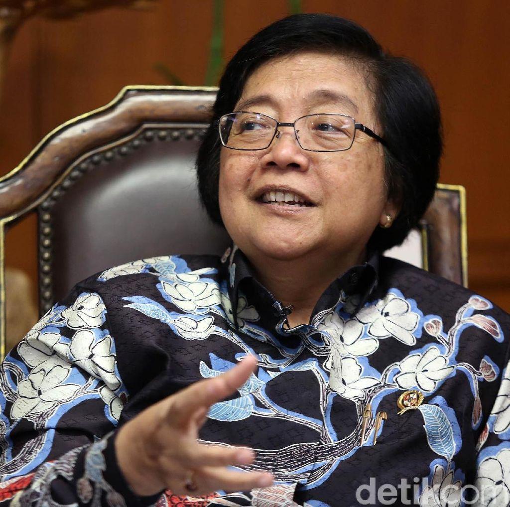Menteri LHK: Illegal Logging Metamorfosisnya Tinggi