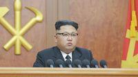 Jamur Rp 19.9 Miliar Ini Dihadiahkan Kim Jong Un untuk Korea Selatan