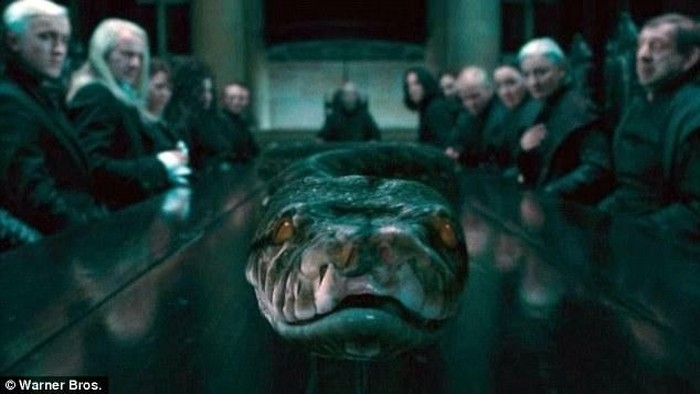 Nagini di film Harry Potter.