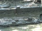 Takut Kena Bala, Warga Tolak Ekskavasi Petirtaan Kuno di Pasuruan