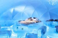 Siap-siap! Ada Hotel Es di Jepang di Awal Tahun