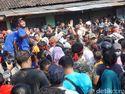 Aksi Peternak Bagi-bagi Ayam Gratis karena Harga Anjlok