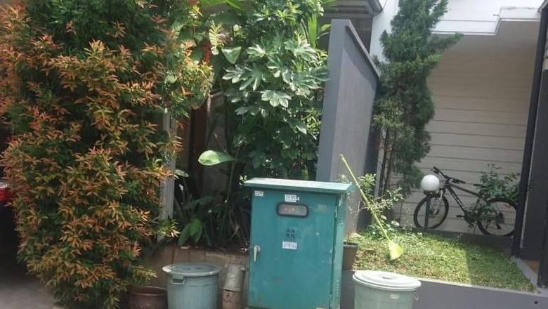 Kisruh Pohon, Jaksa KPK Dipolisikan Tetangganya