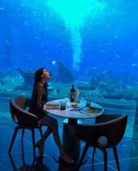 Debbie juga menikmati makan malam bawah laut di Hotel Sanya, Hainan. (yehdeb/Instagram)