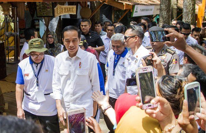 Ia pun menyanjung keindahan Hutan Pinus Mangunan Bantul yang instagramable. Hal itu dikatakan Jokowi dalam pidatonya di pembukaan Festival KPH Tingkat Nasional dan Pameran Usaha Kehutanan 2018 Bantul, Jumat (28/9). Foto: dok. BRI
