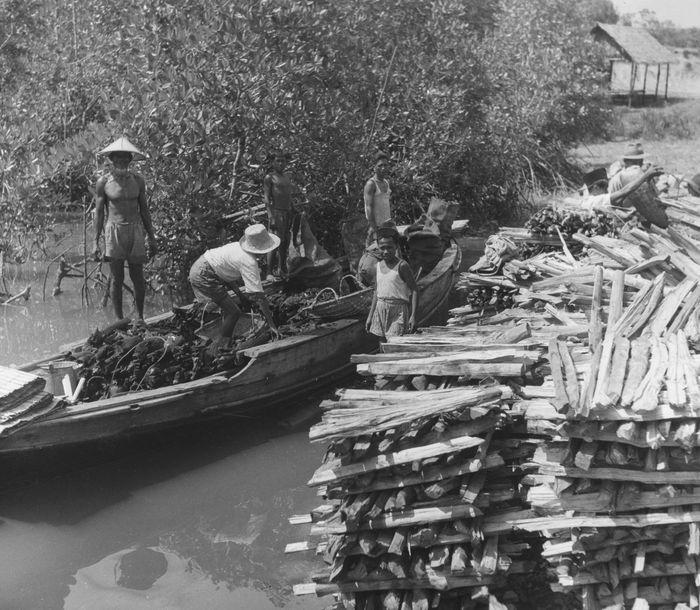 Tak hanya mengangkut warga di daerah Kalimantan. Perahu juga menjadi alat transportasi unutk mengangkut barang. Three Lions/Getty Images.