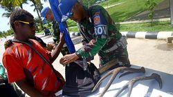 Apa Alasan Utama Warga Menyeberang di Perbatasan Papua Nugini?