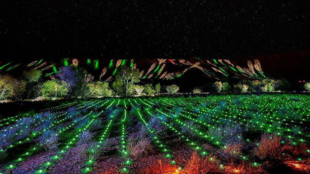 Festival Cahaya Paling Spektakuler di Dunia