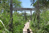 Jembatan Putus Hati