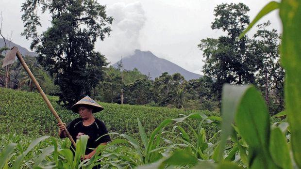 Minahasa Tenggara Siaga Satu Erupsi Besar Gunung Soputan