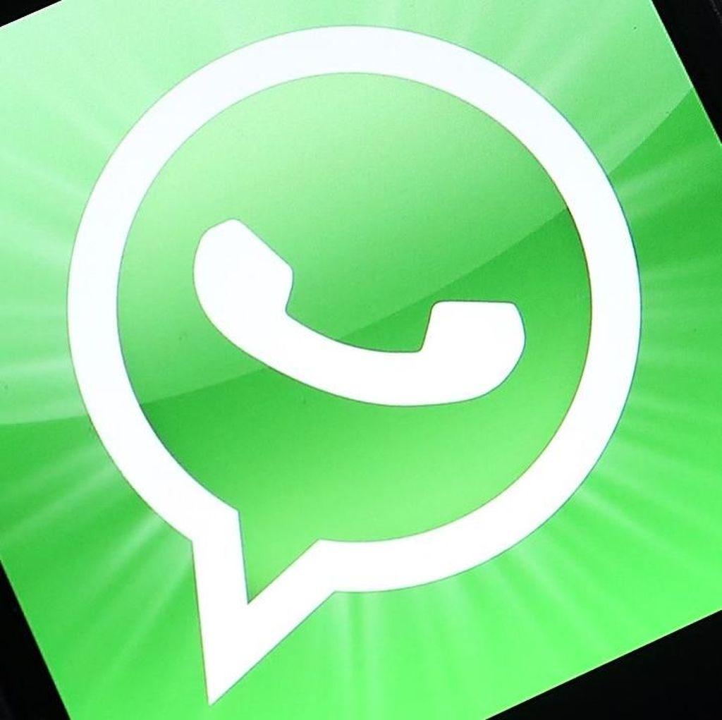 Kirim Teks WhatsApp Ada yang Ngadat, Ada yang Masih Lancar
