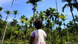 Aksi Komunitas yang Menjaga Cagar Alam Pegunungan Cycloop