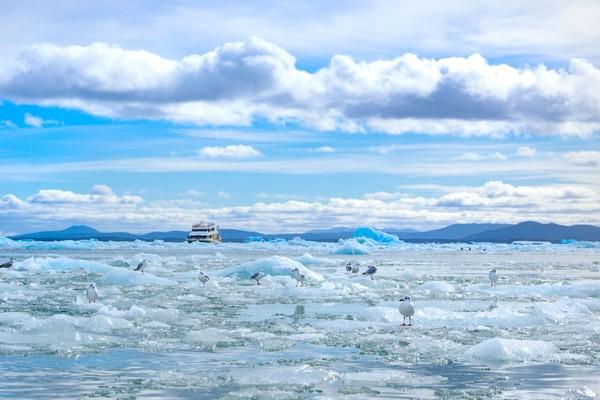 Laguna San Rafael yang berlokasi di Torres Del Paine, salah satu destinasi alam di Chile (Discover Chile)