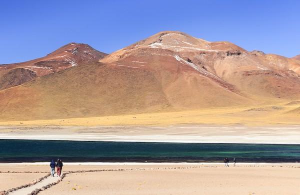 Soal wisata alam dan petualangan, Chile punya banyak. Salah satu yang cukup populer adalah Gurun Atacama (Discover Chile)