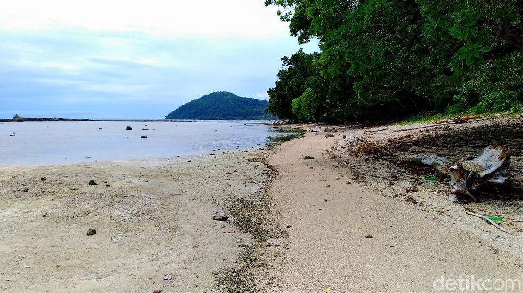 Datang ke Festival Skouw Jangan Lupa Mampir ke Kampung Laut Enggros